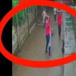 यूपी के इलाहाबाद में रिटायर्ड दरोगा की पीट-पीट कर हत्या, सामने आया दिल दहला देने वाला वीडियो
