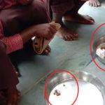 मिड डे मील में बच्चों को नमक-रोटी खिलाने का खुलासा करने वाले पत्रकार के खिलाफ FIR दर्ज